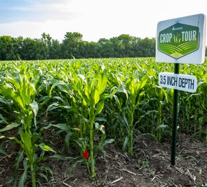 AGCO北美Field Demonstrations Confirm Impact of Ideal Planting Practices  on Corn Yields