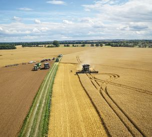 Fendt IDEAL 9T triumphs in the DLG combine harvester test