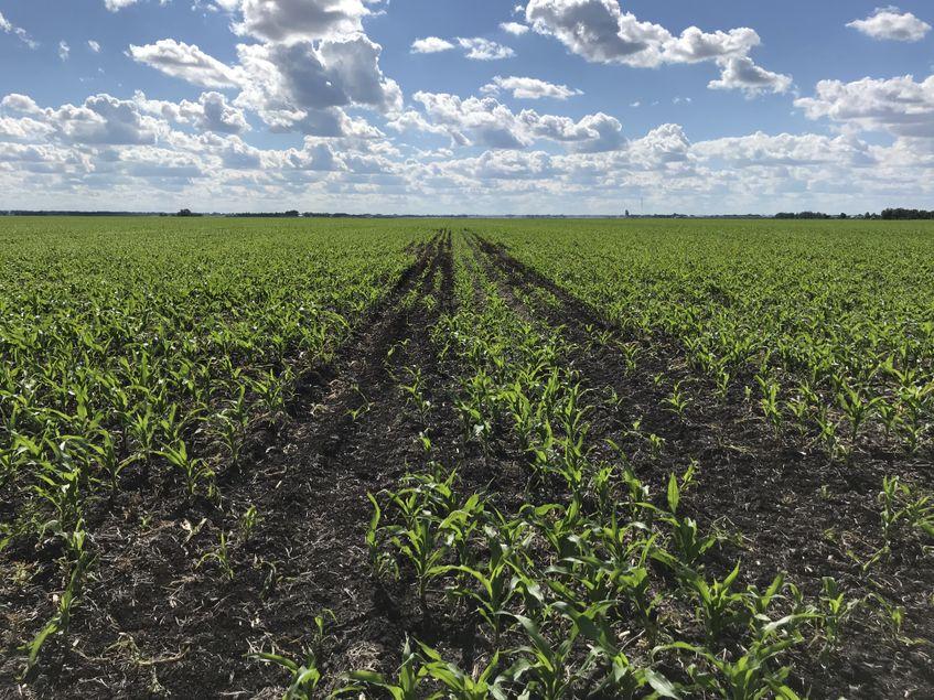 AGCO_NA_CT_Planting_Center_Row_WetField_High_Res