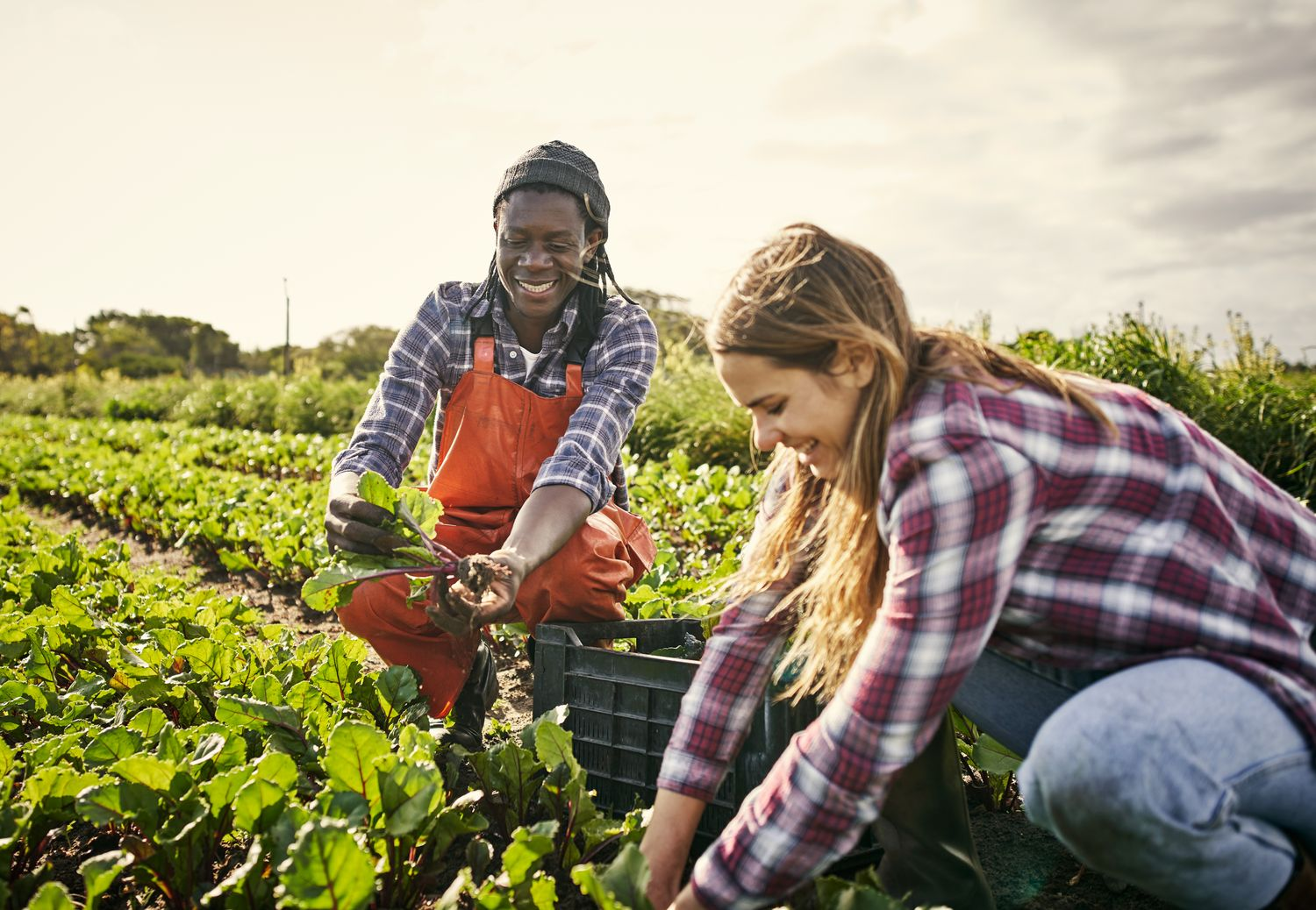 AGCO Agriculture Foundation Launches Africa Agribusiness Qualification Program