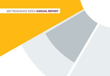 Resilience Index Report