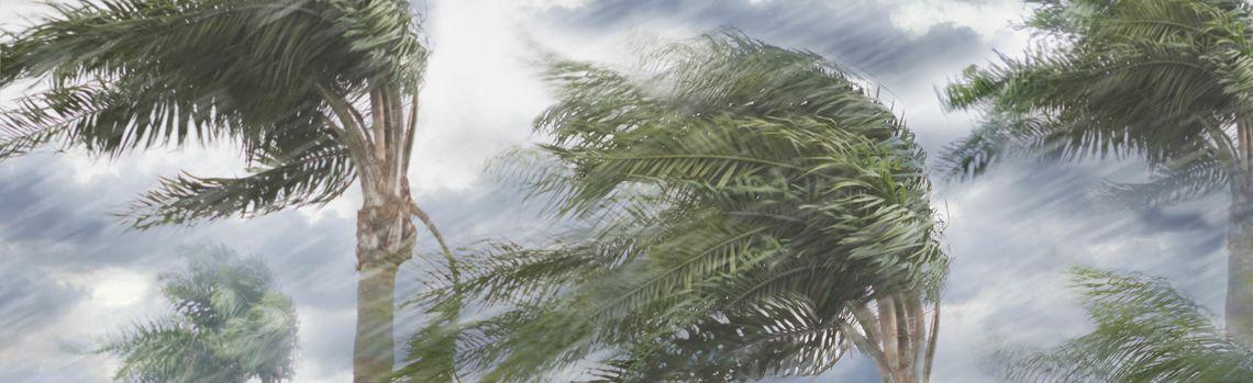 FM Global: Neue Rekorde und erhöhtes Sachschadenrisiko nach Hurrikansaison 2020