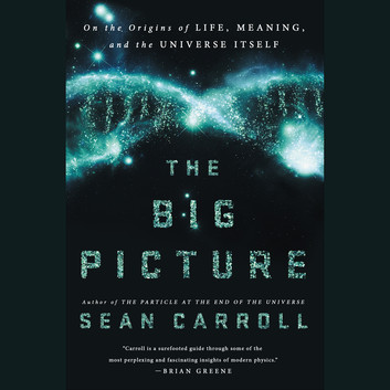 the-big-picture-35