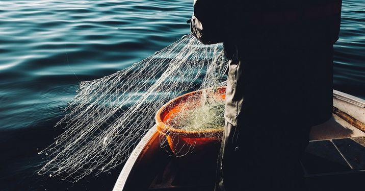 人類首先成為漁夫,文明才會開始—《漁的大歷史》