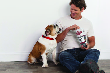 Omaha Steaks Salutes Man's Best Friend with the Launch of a new Dog Treat Line