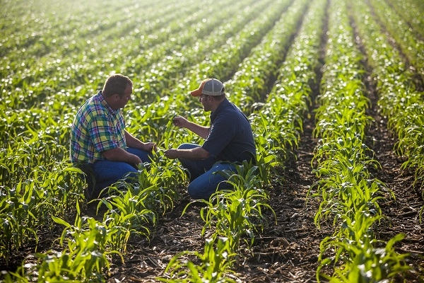 2015 Silver and Bronze Anvils Winner Highlight: Feeding the World One Farmer at a Time
