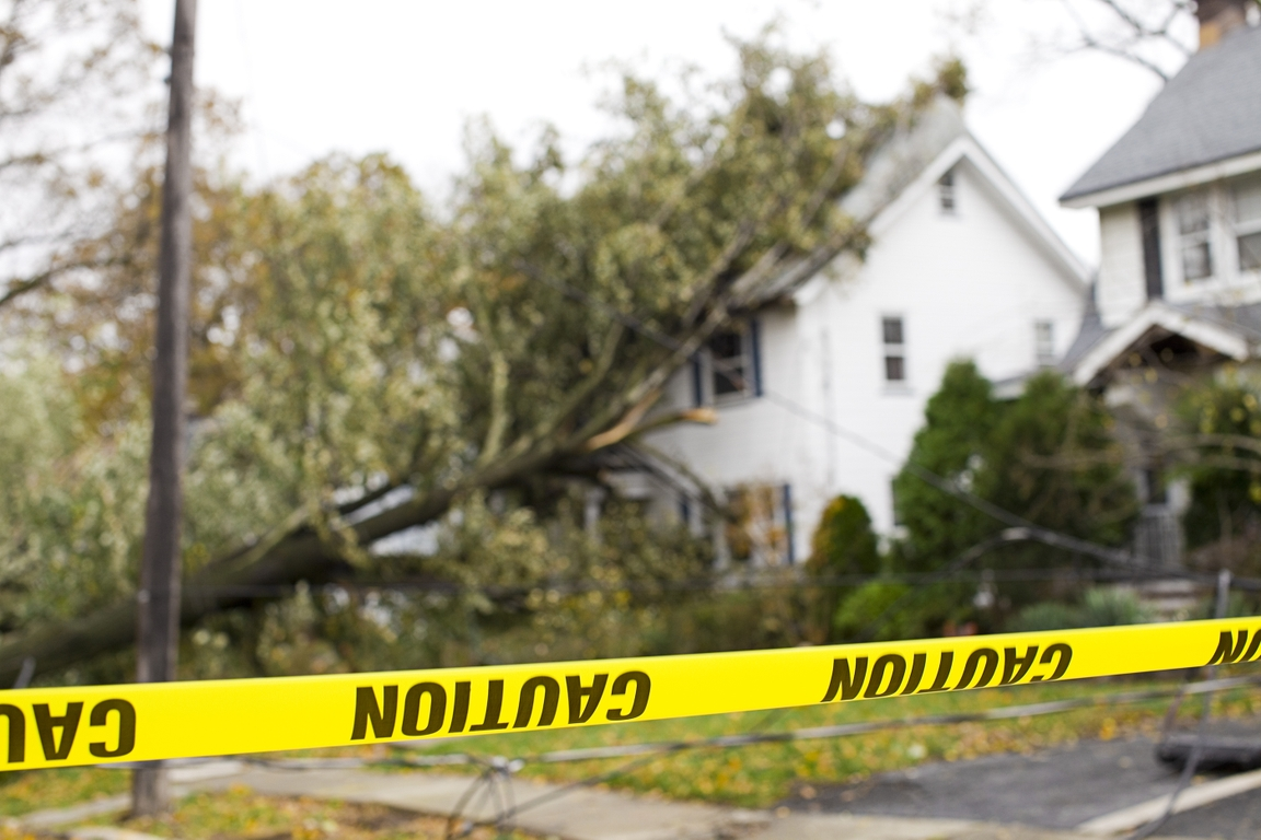 Play it smart during hurricane fallout