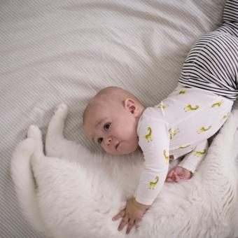 Baby_Bed_wCat_GI_928327824