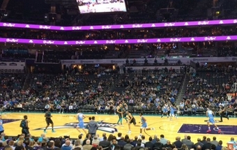 hornets game action