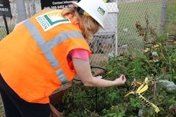 Environmental monitoring includes a test garden.