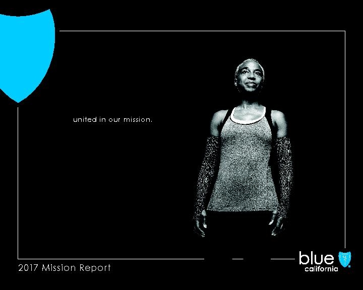 2017 Blue Shield Mission Report