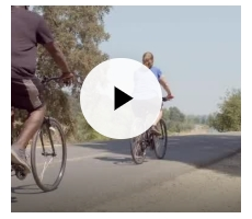 Video: It's National Diabetes Month: Watch How Blue Shield Supports Prevention and More