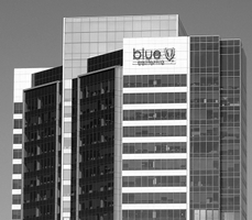 Blue Shield of California Releases its Mission Report