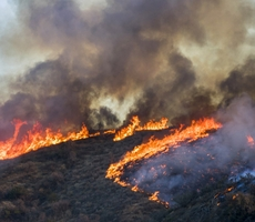 UPDATE: Blue Shield of California Offers Assistance to Members Affected by Wildfires In California