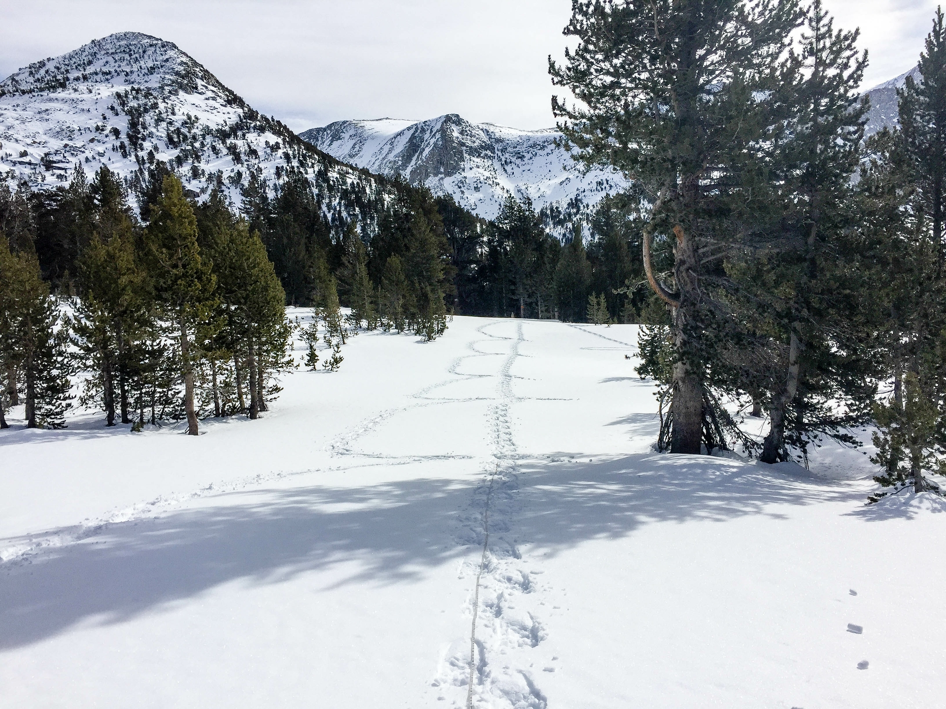 "SCE's snow survey team makes several ""stabs"" to measure the snow at Pioneer Basin, leaving  a D-shaped trail behind."