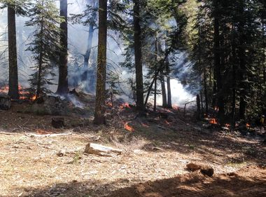 SCE Uses Fire to Fight Wildfires