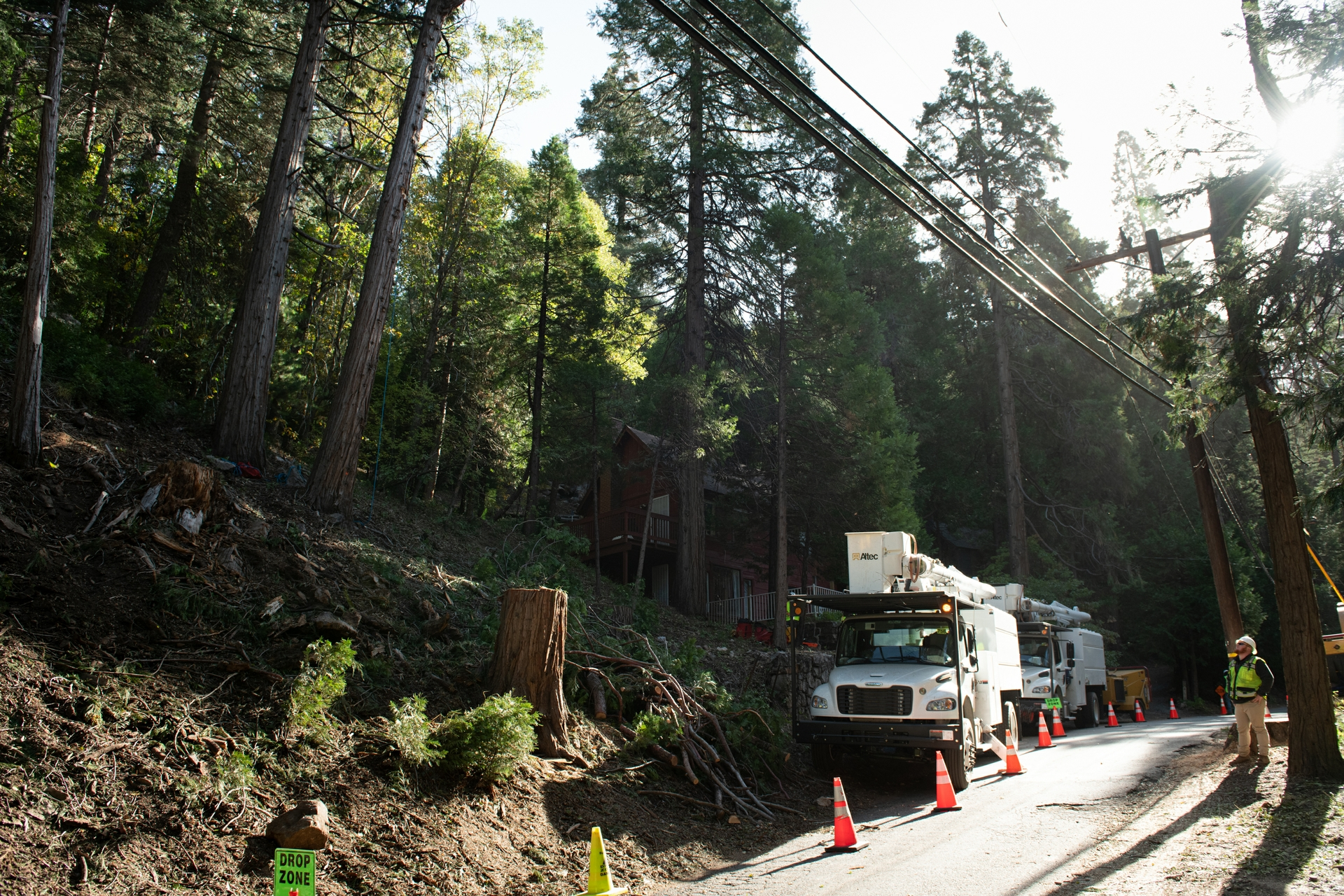 Crews work in the Arrowhead area removing trees that pose a hazard to SCE power lines.