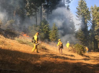 Spreading the Word on Prescribed Burns for Forest Health