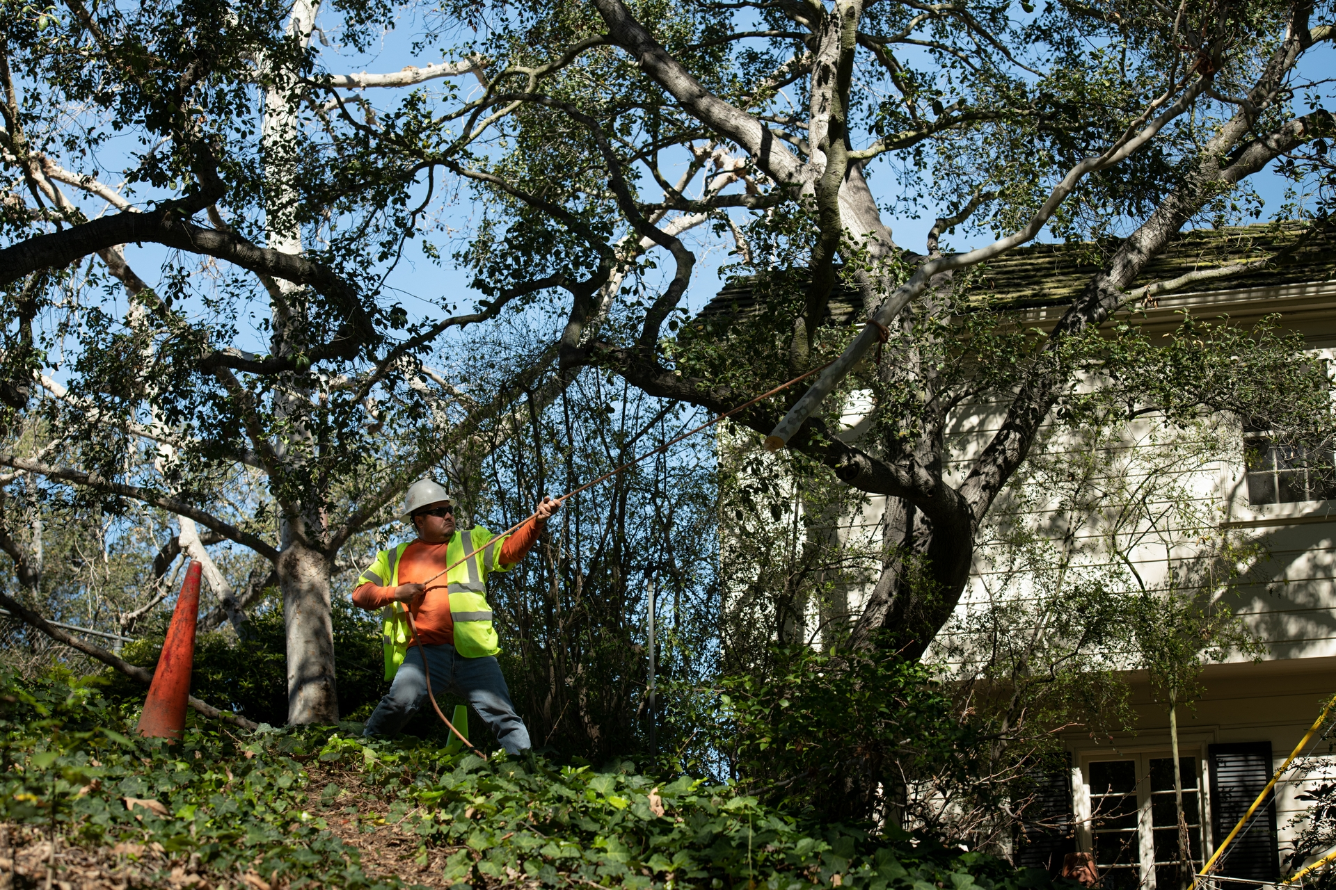 A ground man uses a rope to raise a chain saw to a worker trimming branches near SCE power lines.