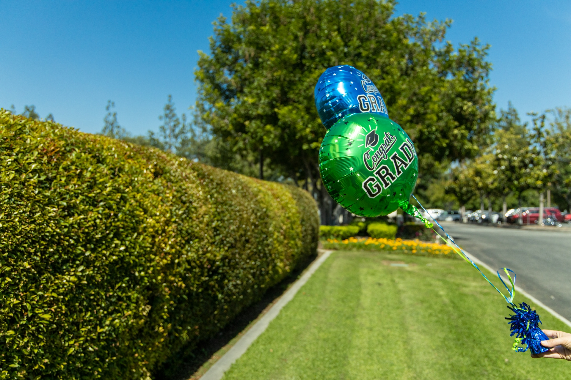 Metallic balloons should always be attached to a weight and never released outdoors, not only because of the electrical safety hazards but also the litter and danger to animals.