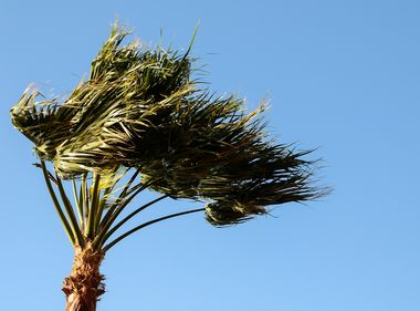 SCE Prepares for High Winds, Possible Public Safety Shutoffs