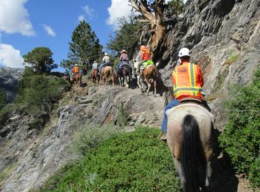 Pack Mules Help SCE Get the Job Done