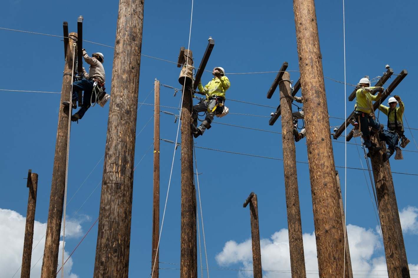 There are 170 million wood poles and 9 million miles of wire in service across the United States.