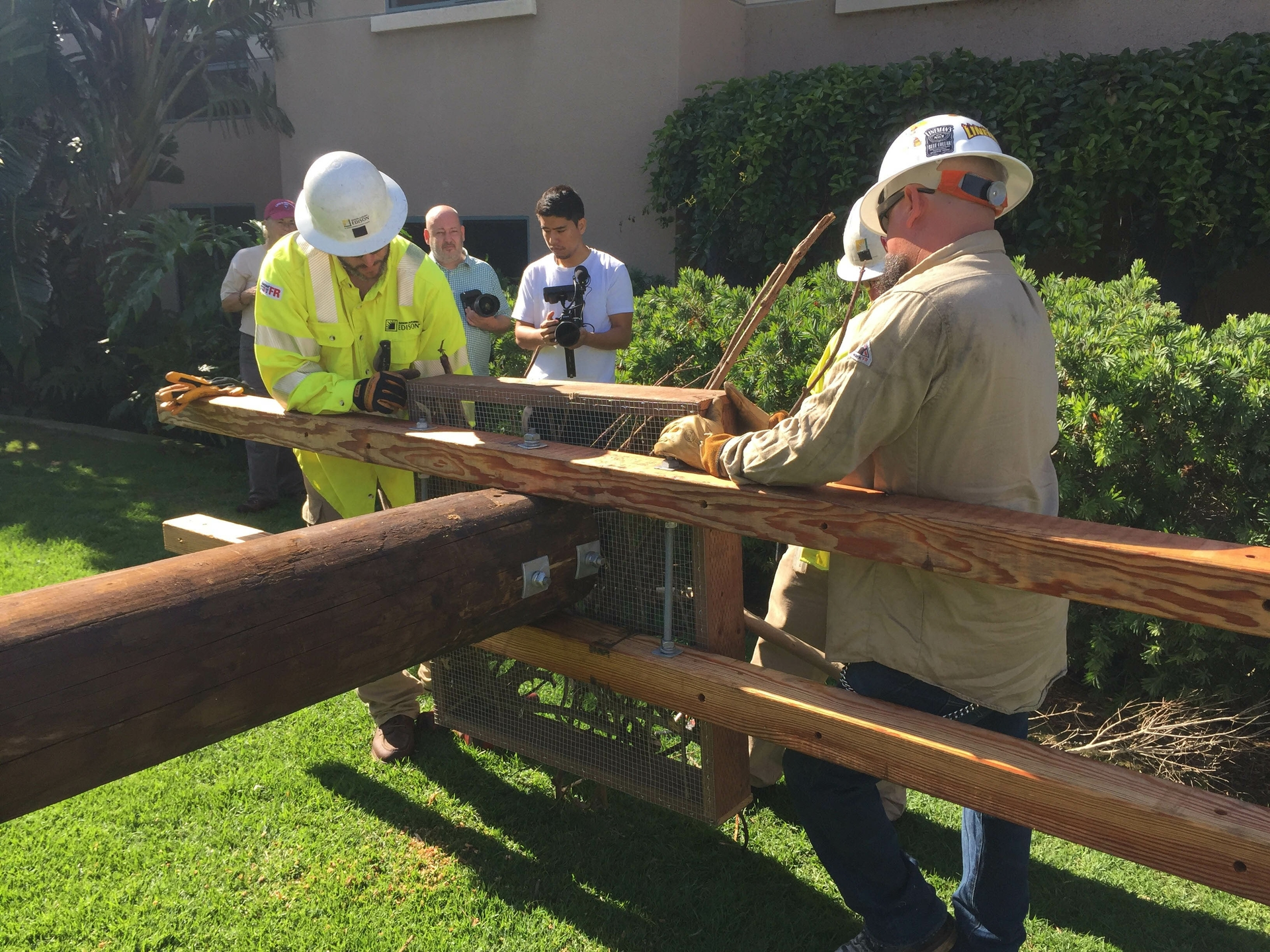 An SCE crew attaches a wood and wire osprey nesting platform to a power pole at Loyola Marymount University.