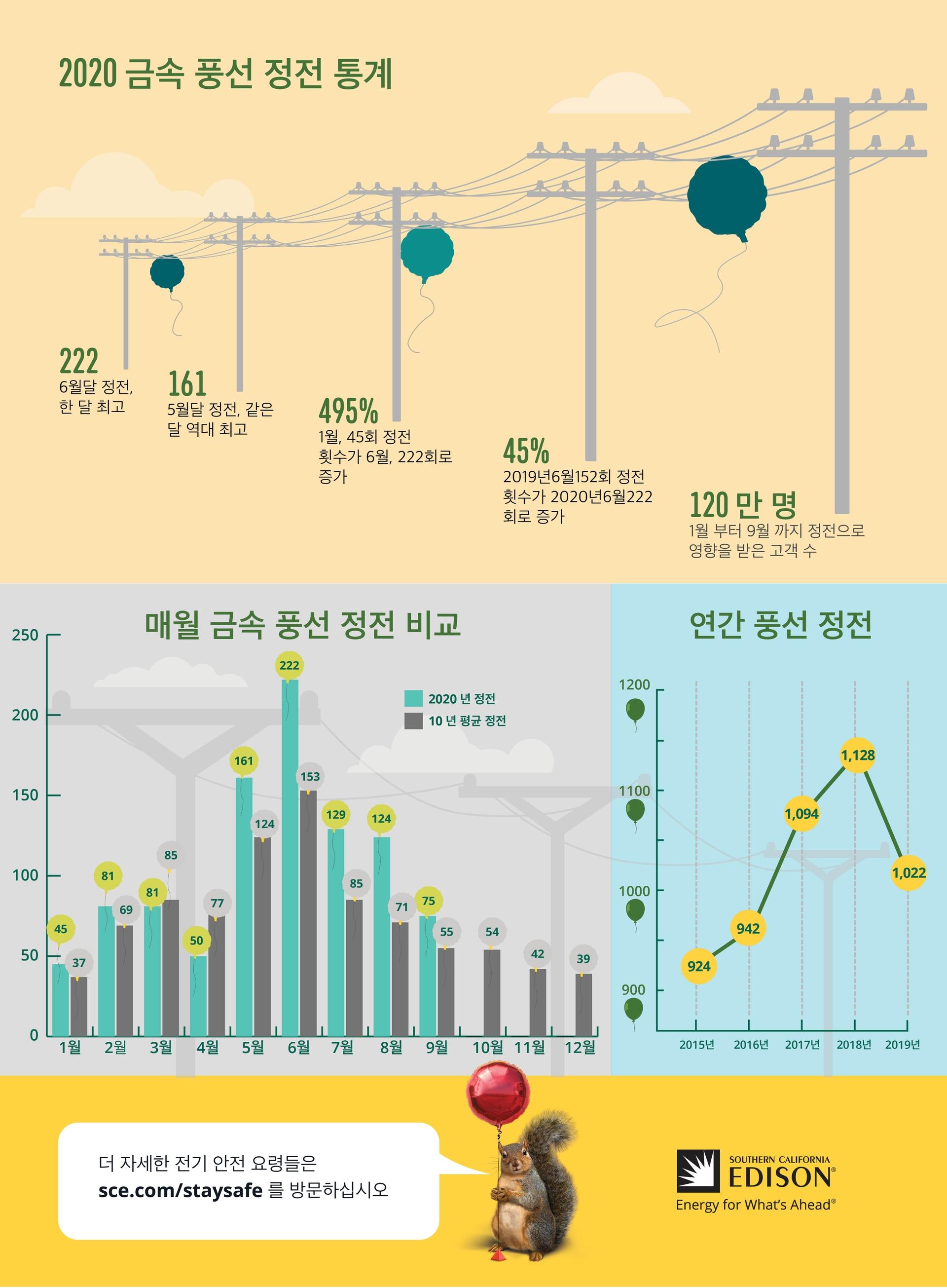 G20-208 Metallic Balloon Infographic_KO