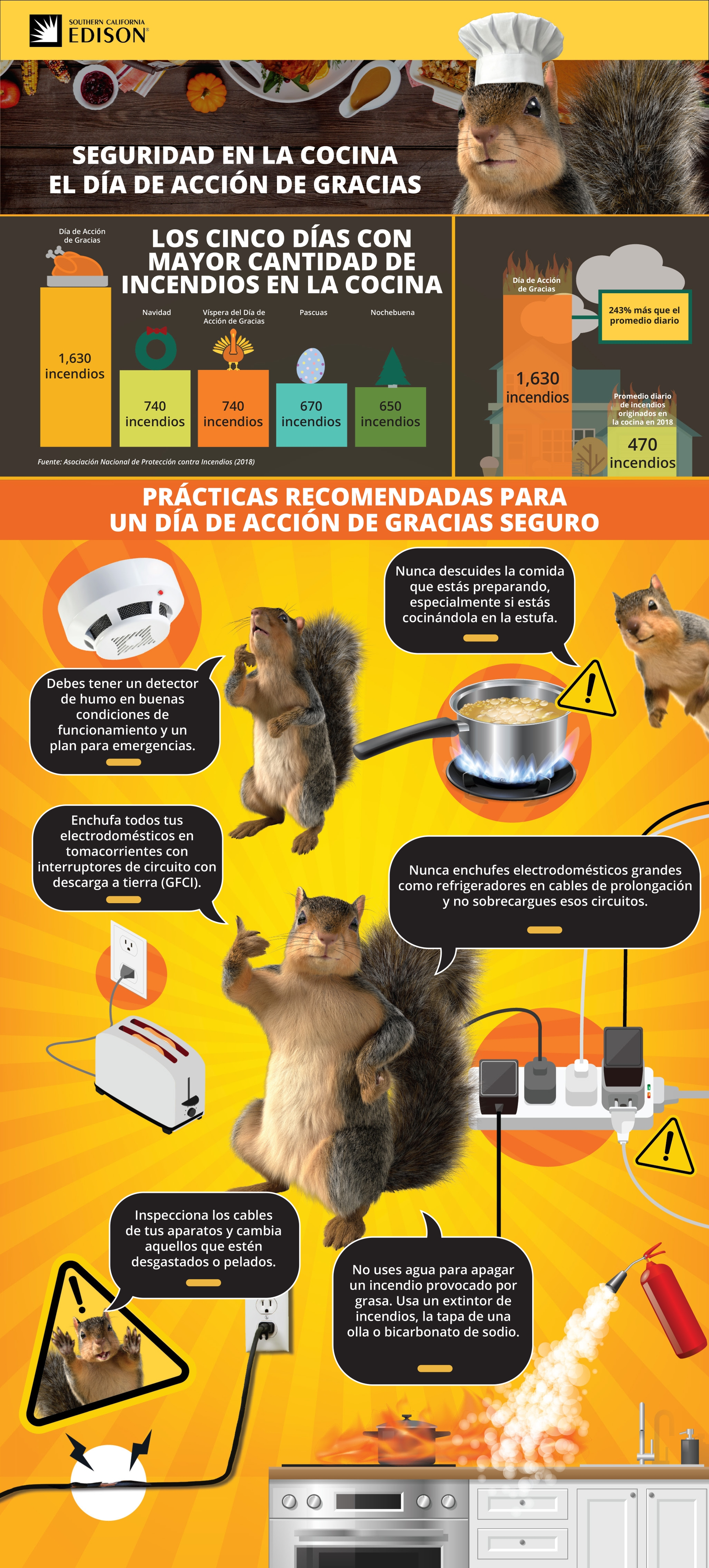 Thanksgiving_Cooking_Safety_SP