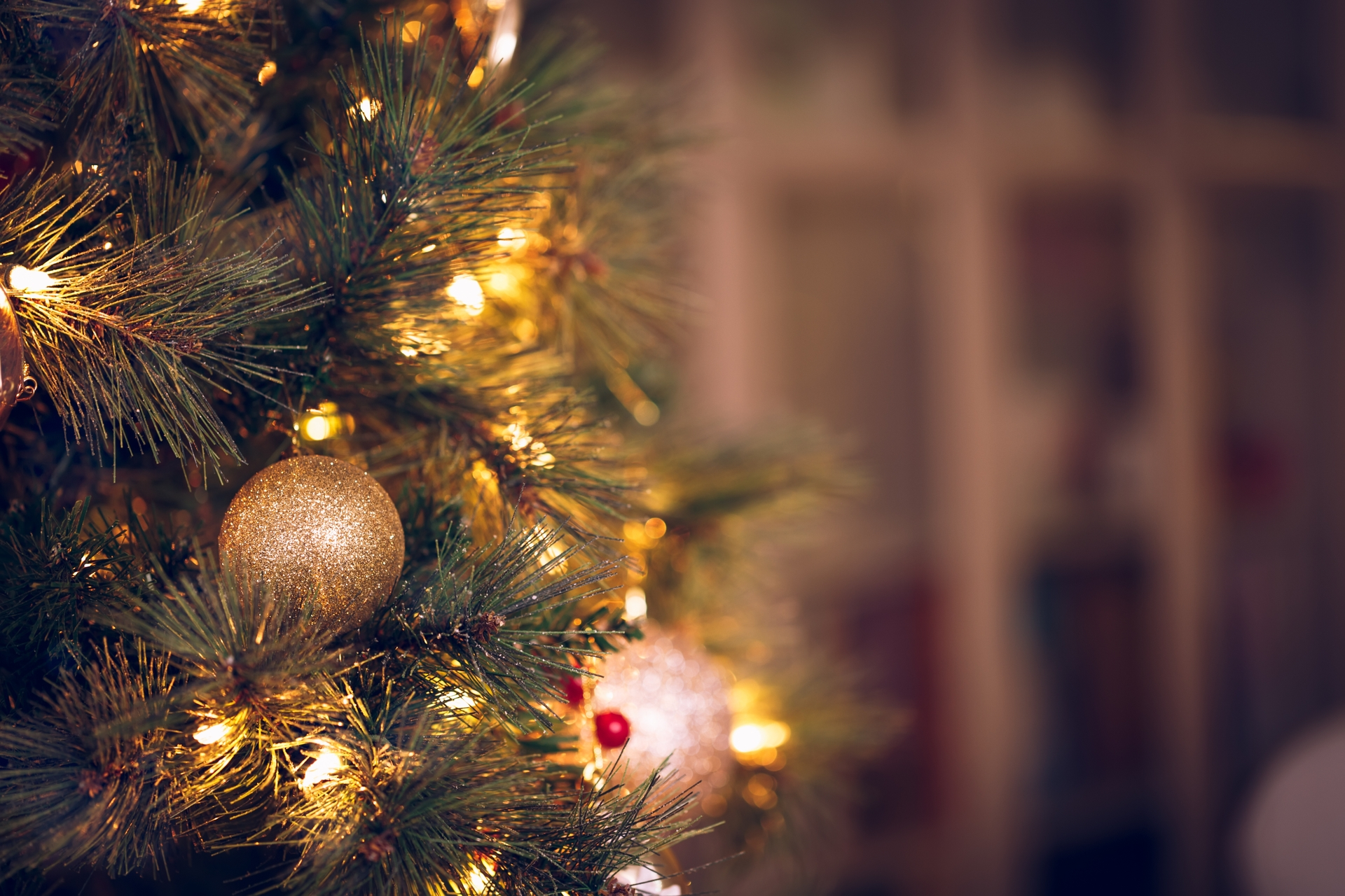 On average, 160 home fires begin with Christmas trees each year, according to the Electrical Safety Foundation International.