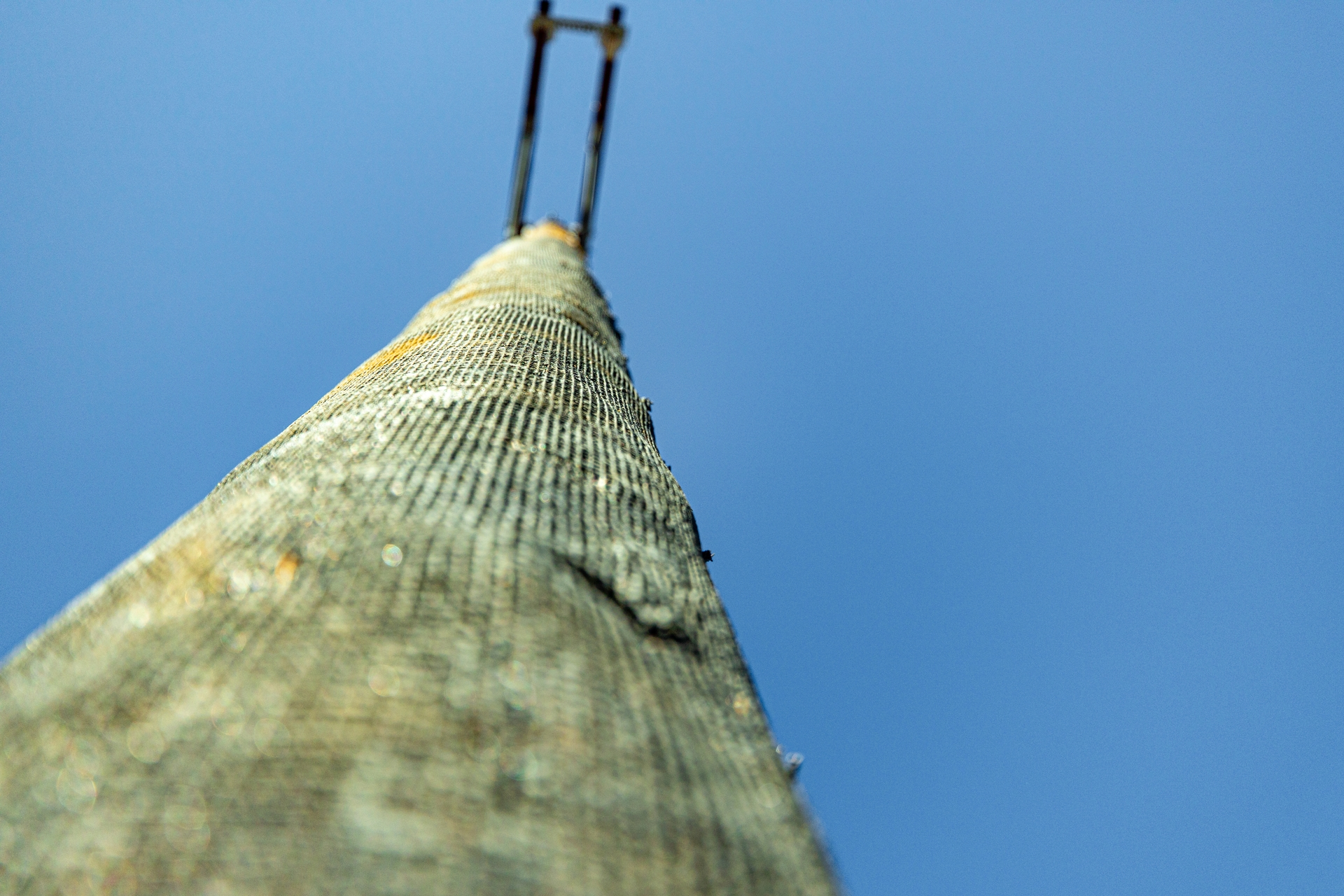 One of the wooden poles wrapped in fire-resistant mesh used in the Creek Fire restoration.