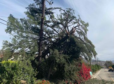 Electrical Equipment Damage Seen Due to High Winds
