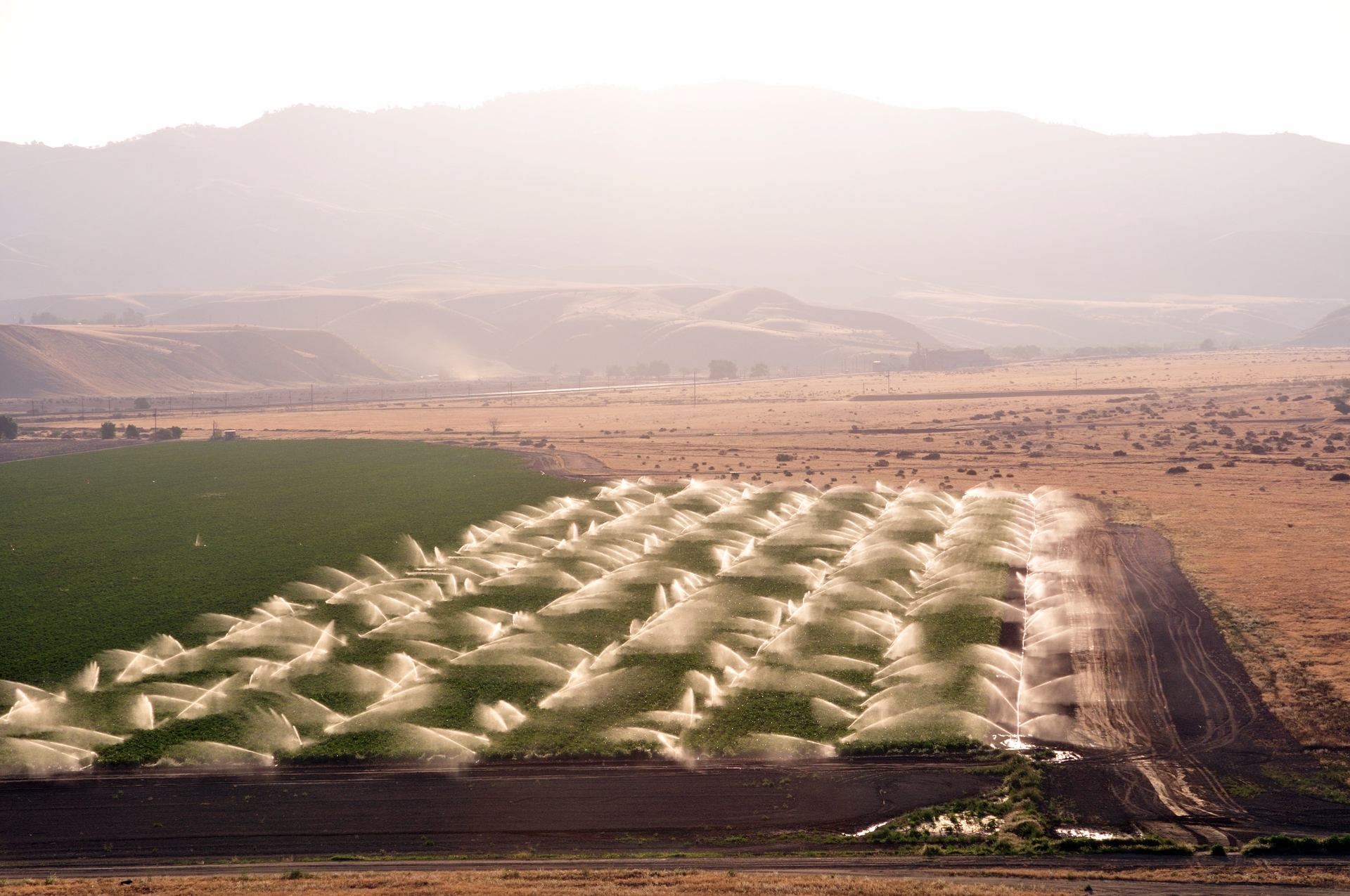 The water that is held at Millerton Lake is used primarily for irrigation of several millions of acres of farmland in the San Joaquin Valley.