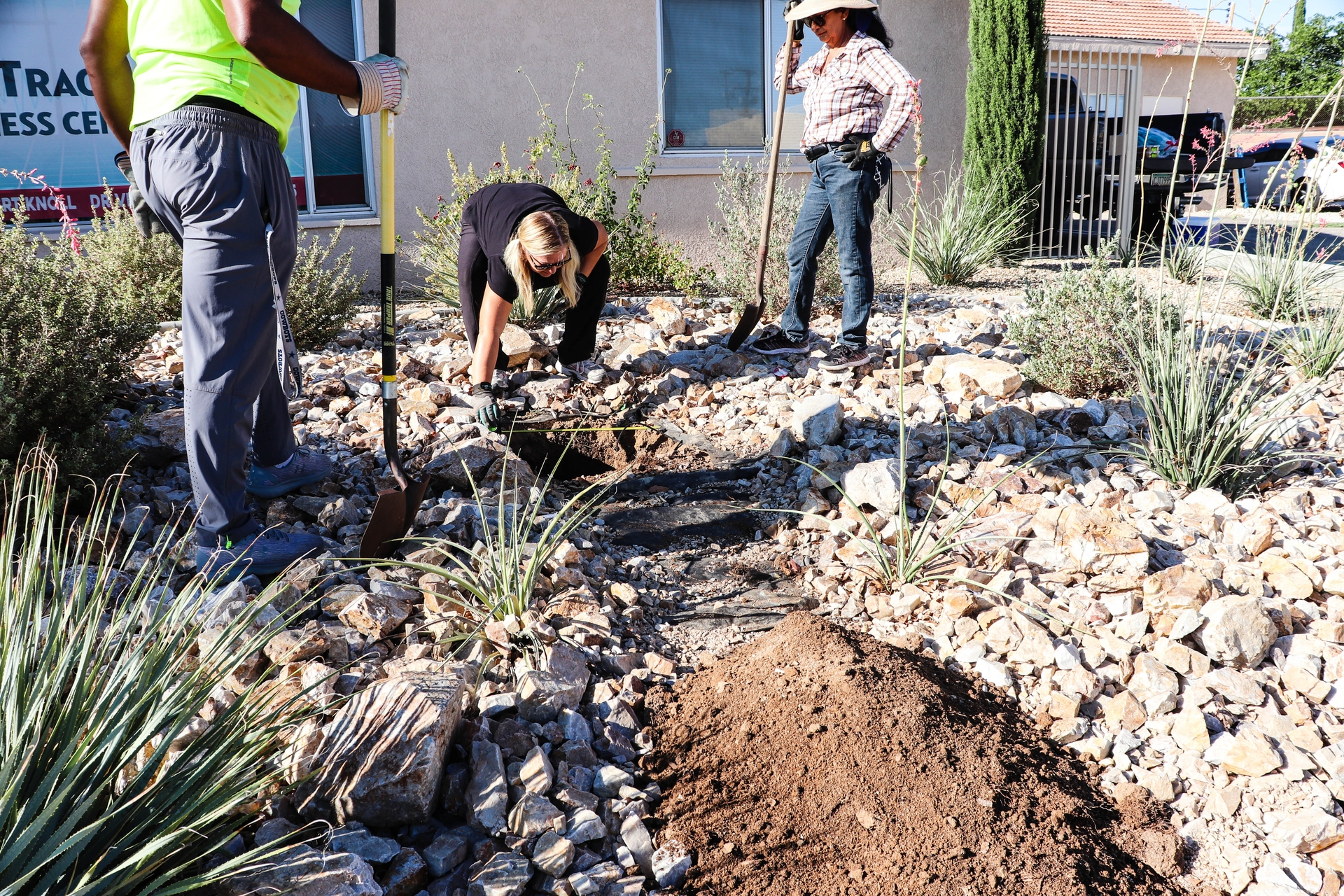 Community Health Action Network volunteers prepare to plant a fruit tree outside the Victorville Senior Center.