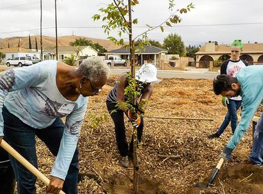 Planting Trees for Greener, Cleaner Communities
