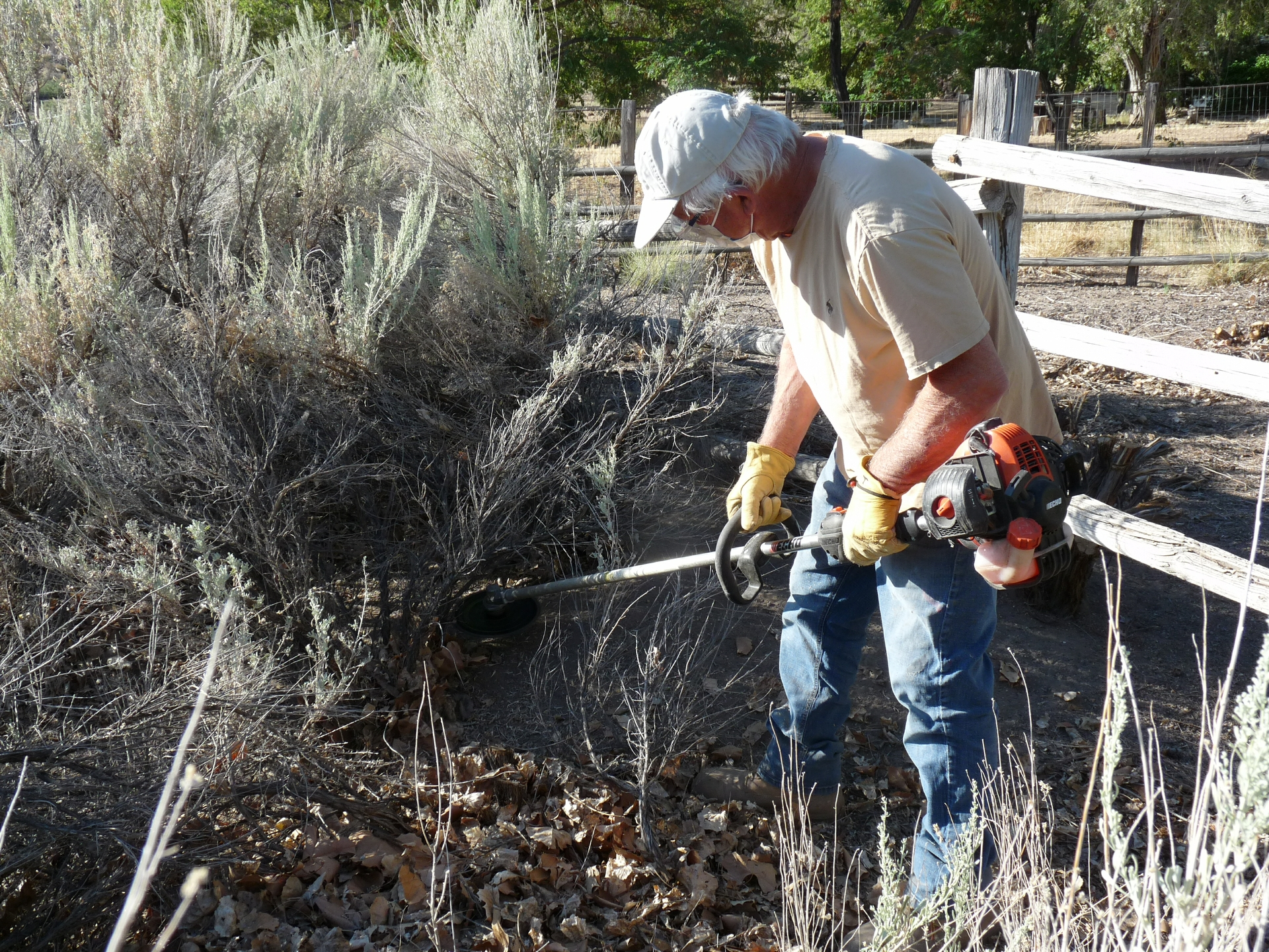Ted Wright clears sagebrush from his yard in Old Wilkerson.