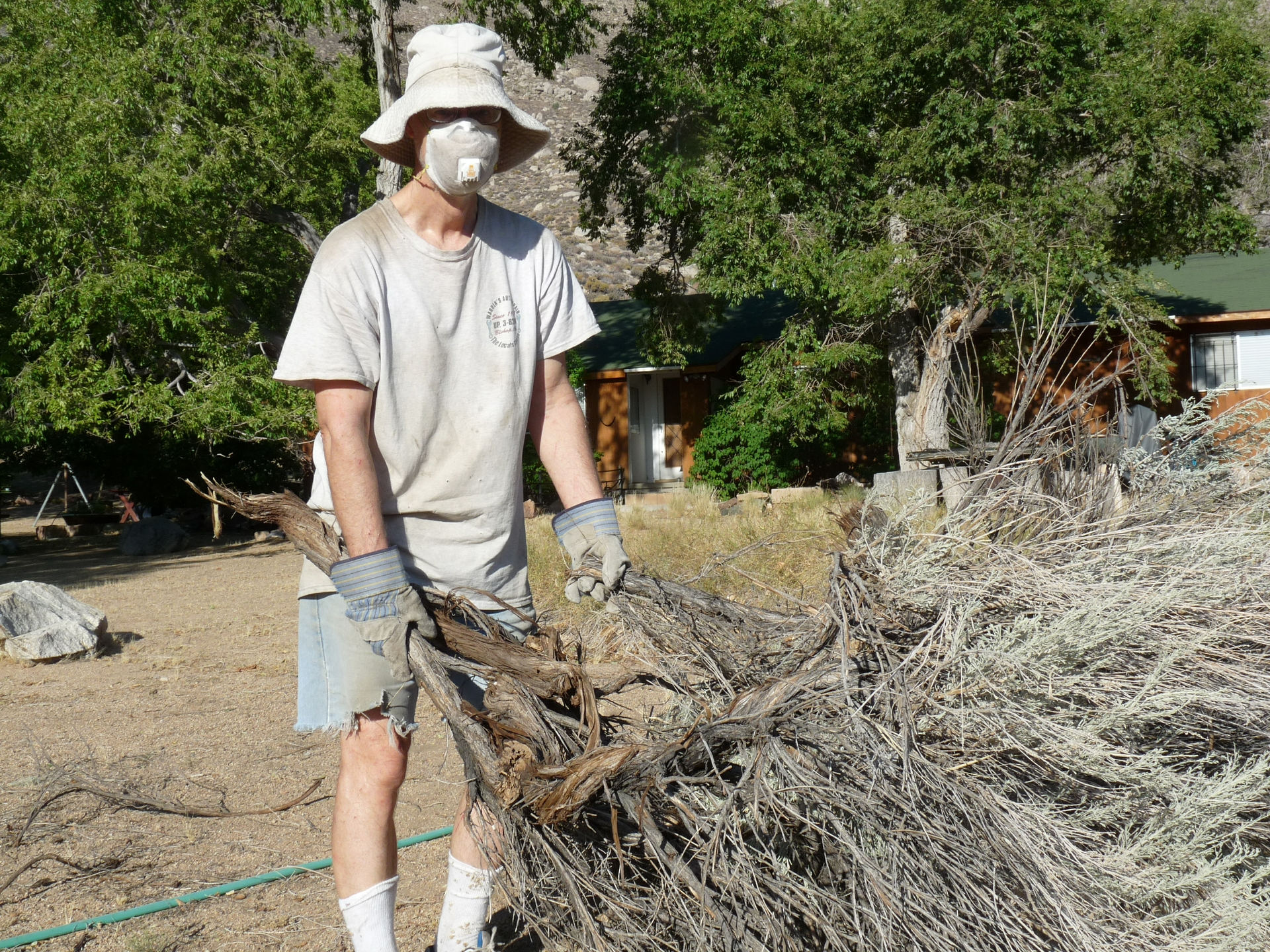 David Rowe of Old Wilkerson hauls sagebrush.