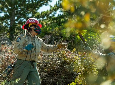 CCC Forestry Corps Plays Vital Role in State's Wildfire Mitigation