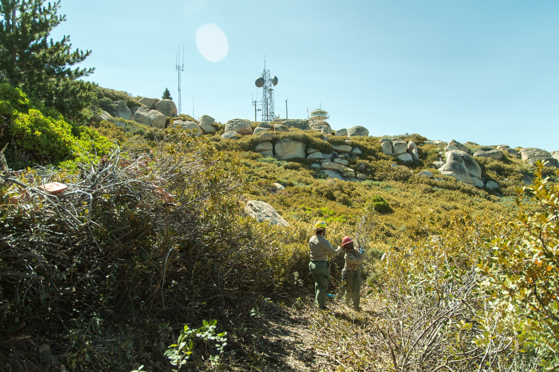 For the past few months, Corpsmembers have worked to clear hazardous brush and trees near the Keller Peak Fire Lookout in Big Bear.