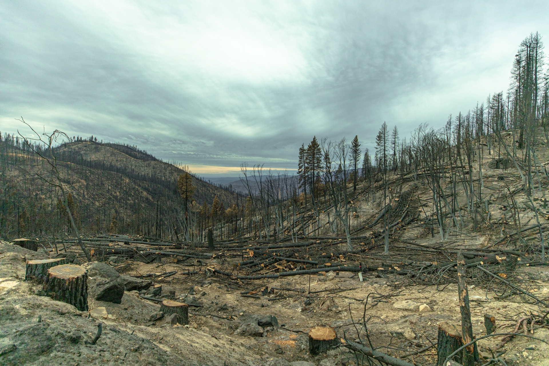The Creek Fire burned nearly 380,000 acres in the Sierra National Forest last September through December.