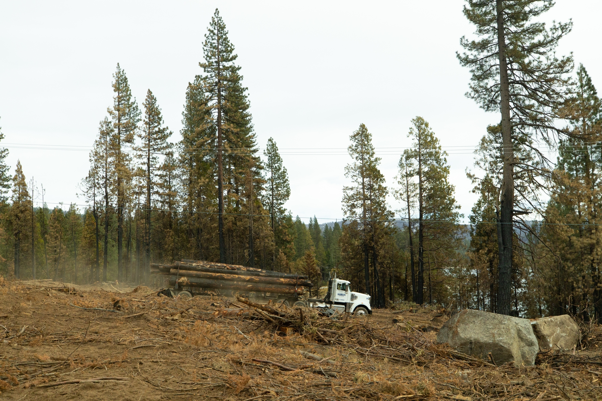 The nonprofit Highway 168 Fire Safe Council works to educate, identify and implement fuel reduction projects such as tree debris clearance.