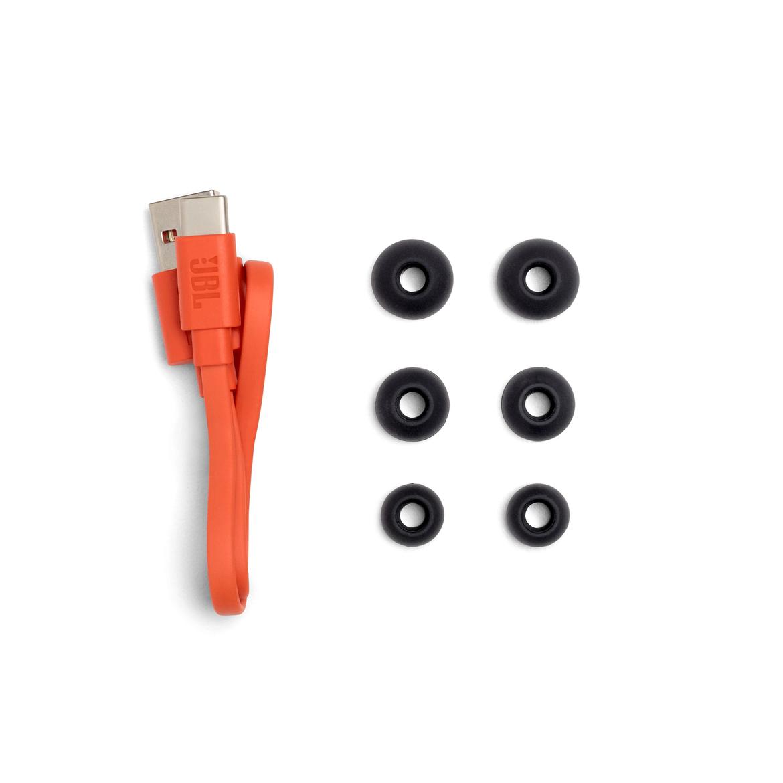 JBL_ENDURANCE_PEAK II_Product Image_Accessories_BLACK