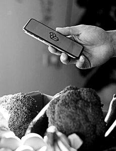 Wellvolution de Blue Shield of California presenta funciones nuevas que ayudan a los miembros con diabetes tipo 2 a tomar el control de su salud