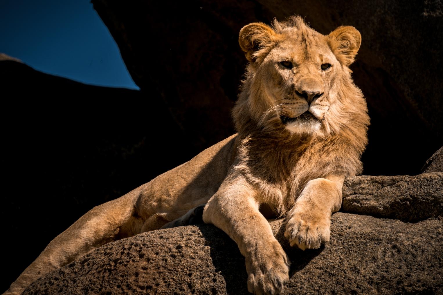 Omaha Zoo_African Grasslands