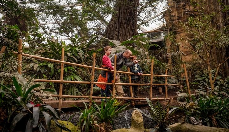 zoo_rainforest