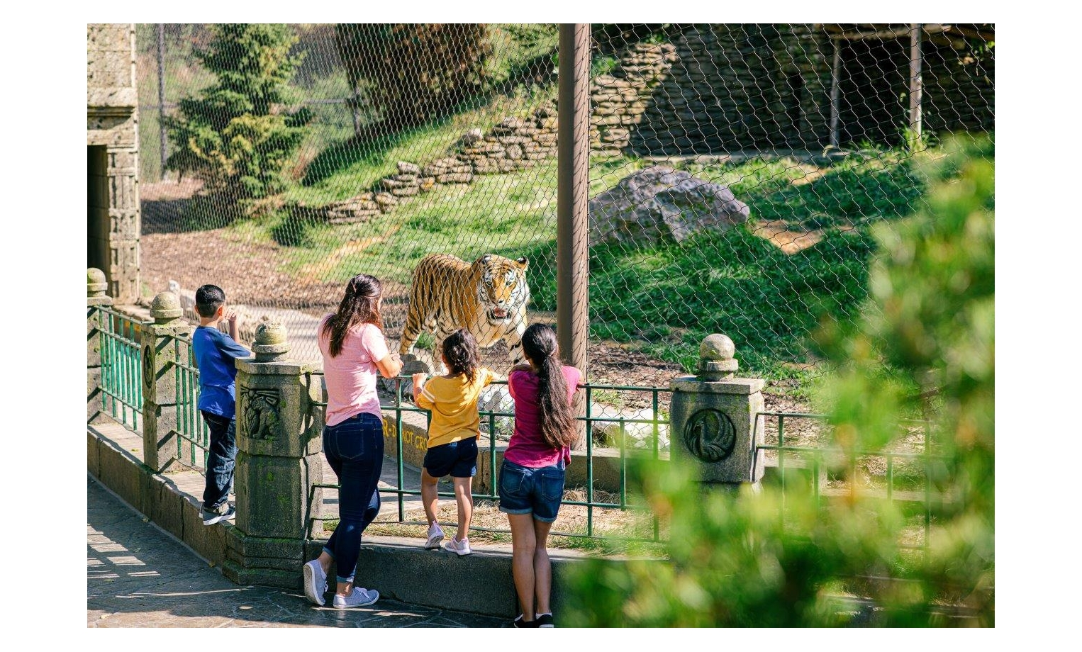 Asian Highlands at Omaha's Henry Doorly Zoo and Aquarium and the Wildlife Safari Park Both Take First Place Spots in 2021 USA TODAY 10Best Readers' Choice Awards