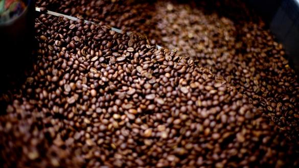 Roasting Coffee at Coava