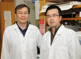 Dr. Wei Hsu trains several pre- and post docs through this grant