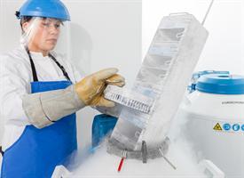 liquid nitrogen tanks and a lab tech